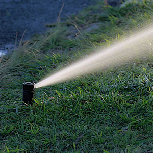 Bewässerung braucht Druck